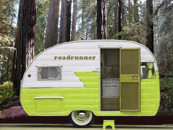 same camper, new color; same website, new theme