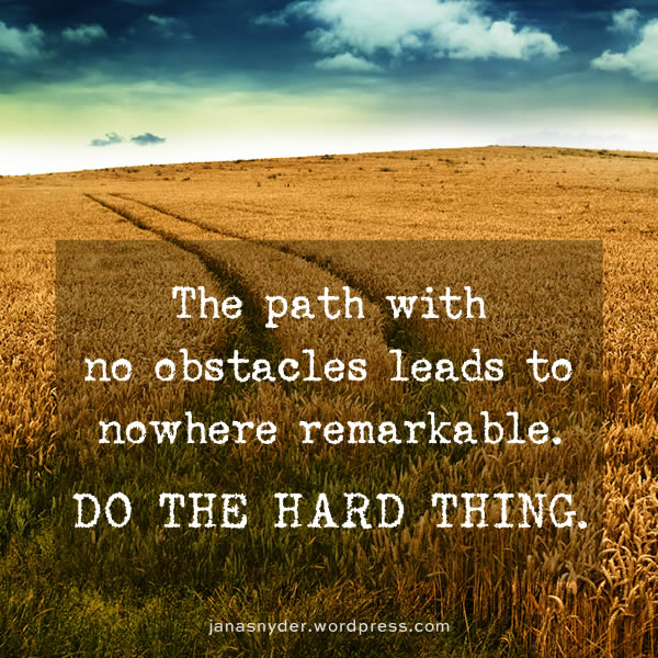 the path with no obstacles leads nowhere remarkable. do the hard thing.